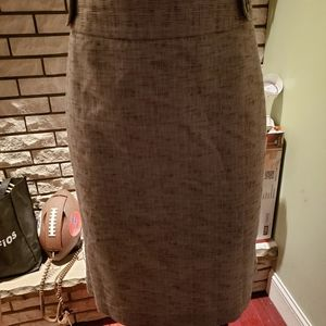 Rafaella LIned Skirt with Pleats in the back